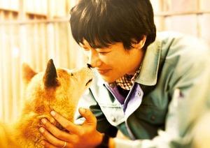 映画『ひまわりと子犬の7日間』