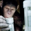 映画『猿の惑星:創世記(ジェネシス)』