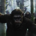 『猿の惑星:新世紀(ライジング)』映画最新映像