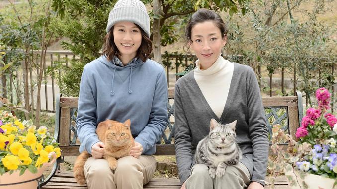 WOWOW連続ドラマW「グーグーだって猫である2 - good good the fortune cat - 」表紙