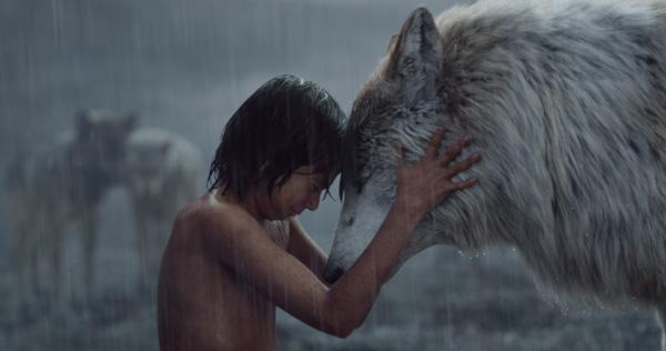 映画『ジャングル・ブック』ジャングルの動物に育てられた人間の少年モーグリの物語