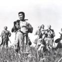 映画『七人の侍』(黒澤明監督)