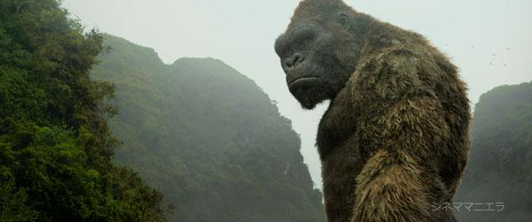 振り返るキングコング、映画『キングコング:髑髏島の巨神』より