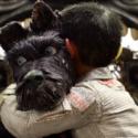 アタリ少年が犬にハグする、映画『犬ヶ島』より