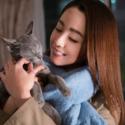 映画『猫は抱くもの』沢尻エリカが体当たりでこじらせアラサー女性を熱演