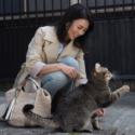 ヒロイン役の柴咲コウとネコ