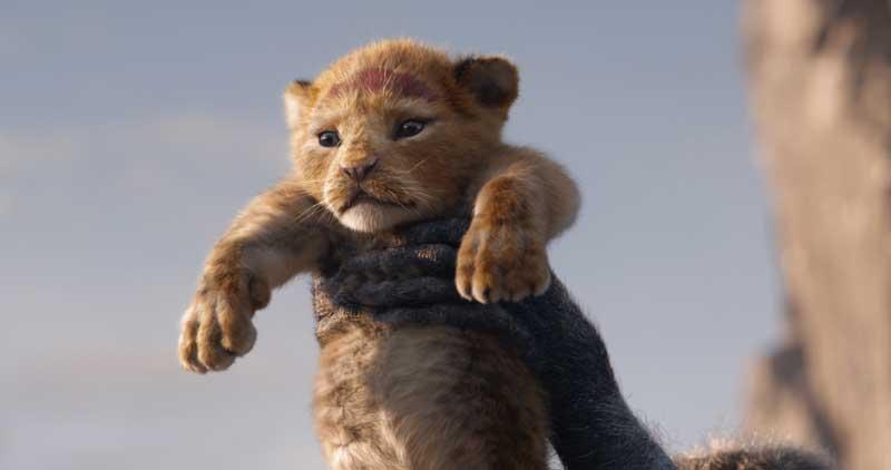 王家の一族に生まれた子ライオンのシンバ