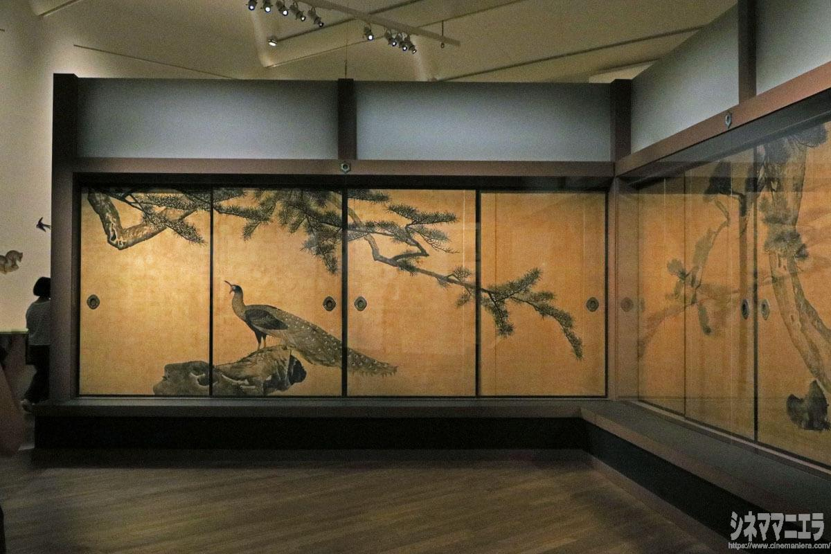円山応挙「松に孔雀図」